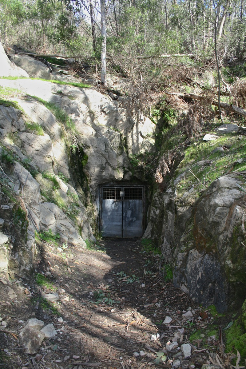 The door to the tunnel