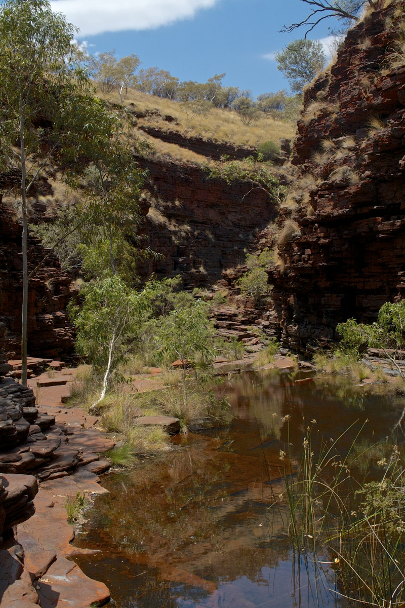 At the bottom of Weano Gorge